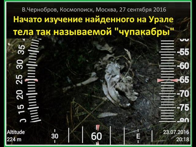 Доклад Вадима Черноброва: Загадка чупакабры 27.09.2016