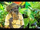 Ямайка сердце Карибского моря Погрузись в ритмы регги со стаканом ямайского рома