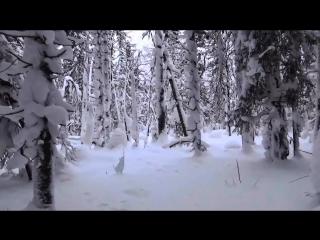 """Одиночный поход на Ветлан. """"Выживание"""" и ночевка в зимнем лесу при -26 без палатки и костра. ПВД"""