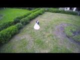 свадебный клип аэросъемка в Курске - YouTube