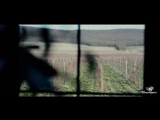 Фестиваль авторского вина In vino veritas 19.11.2016