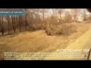 трактор экскаватор юмз-6 5 тыс. видео найдено в Яндекс.Видео_0_1475551514584