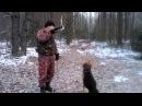Русская гончая и охотничий горн