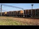 У Чопі митники не пропускають товарний потяг з деревиною. Але чи надовго?