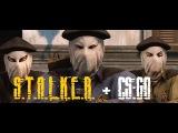 S.T.A.L.K.E.R. + CSGO