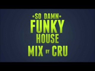 It's The (So Damn) Funky House Mix by Cru!