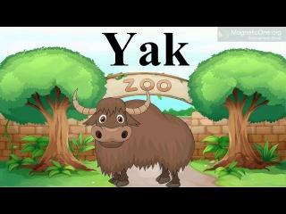 Урок 12 Англійська мова 1 клас. At the Zoo Частина 2