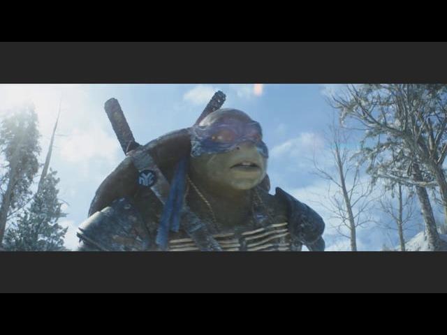 TEENAGE MUTANT NINJA TURTLES SHOW REEL
