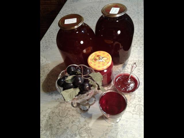 Компот и конфитюр из сливы (терн). Просто и выгодно / Compote and jam from plums