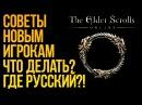 The Elder Scrolls Online - ЧТО ЭТО ЗА ДИЧЬ? - ГАЙД ДЛЯ НОВИЧКОВ!