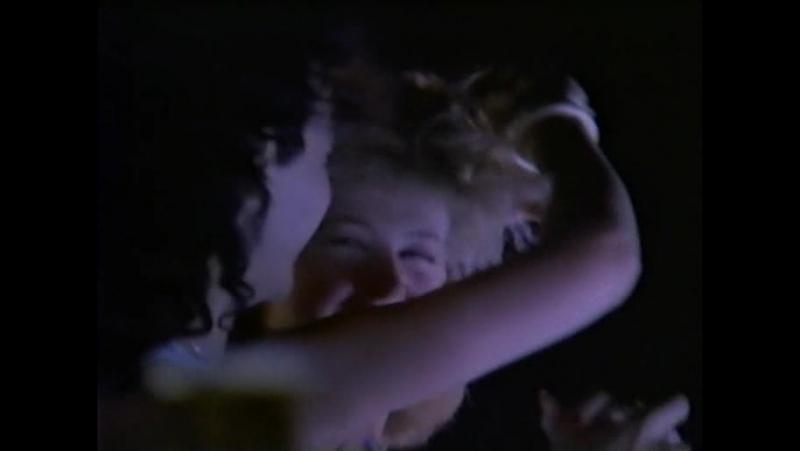 Vixen-Cryin(1988)