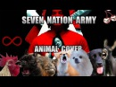 The White Stripes Seven Nation Army Animal Cover
