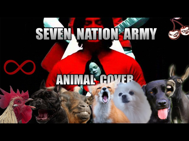 The White Stripes - Seven Nation Army (Animal Cover)