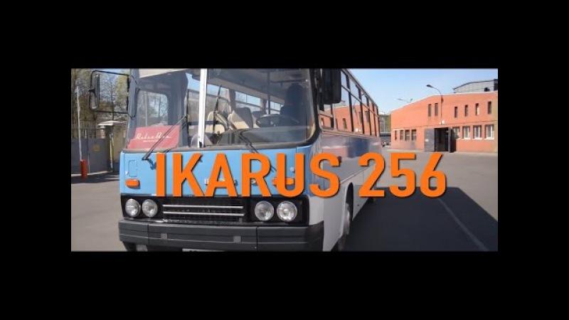 Фильм IKARUS 256 Мечта Детства | Обзор, Ретро Тест-драйв, История Создания | Pro Автомобили CCCР