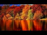 Осенний блюз. Золотой саксофон Autumn Blues. Golden Saxophone ВидеоКанал exZotikA Max