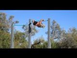 Charly Pn - Street Workout Marseille