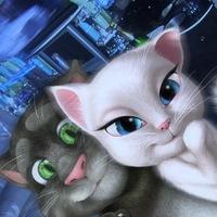 Фотка на аву кот том