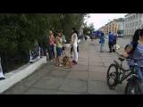 #ХэлоуВоркута | 13.08.16 г.Воркута митинг в защиту животных приюта