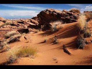Дикая природа пустыни. Затерянный мир. Документальный фильм National Geographic.
