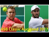 Jack Sock vs Steve Johnson 2017 ASB Classic Auckland Semi Final Highlights by ACE