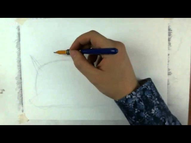 Рисуем котейку