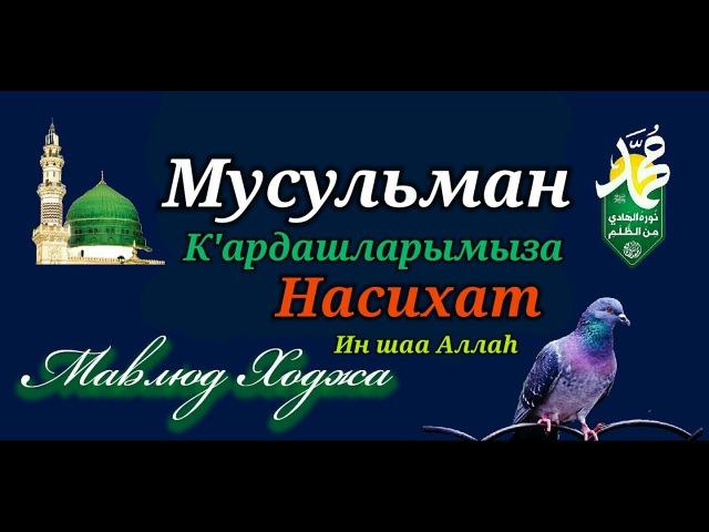 Ahiskali Mavlud Hoja Musulman Kardashlarimiza bir Nasihat In sha Allah
