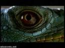 Mortal Kombat II - Extended Live Action TV Spot UK | Commercial (60 Seconds)