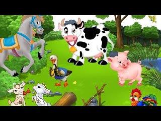 Мультик Про Животных, Загадки, Пазлы. #мультик, #загадки, #детский канал