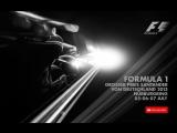 F1 2013. 09. Гран-При Германии, гонка