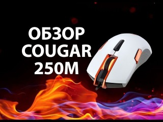 Cougar 250M Обзор моей игровой мышки!