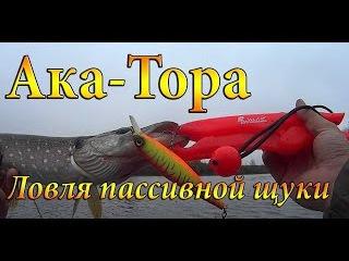 Ака-Тора. Ловля мега-пассивной щуки на воблеры осенью. Провокаторы работают!