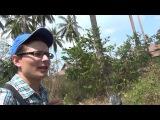 Остров Самуи, Таиланд. Серия 48 - Кругосветное путешествие