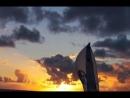 Il Transpac 44 ° 2007 MORNING LIGHT Il documentario del una vera vita In inglese