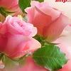Доставка цветов в Тюмени «Букетная»