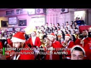 Праздник приходит: христиане Алеппо украсили город в преддверии Рождества и Нового года