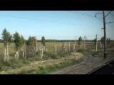Западная Сибирь вид из окна поезда