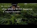 Как МВД и ФСКН борются с наркотиками