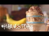DIY: Frozen Bananas Soft Serve | #HarvestDay | Oprah Online