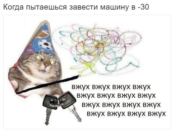 1B9mWoP_nMQ.jpg