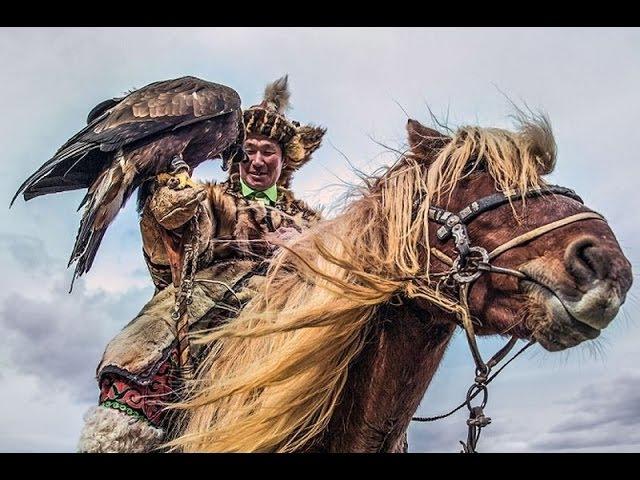 Предки казахов приручили лошадь Ботай 5 000 лет до н.э. и дали толчек развития чело ...