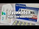 Туринабол (ТУРИК СОЛО) - Как курсить, реузьтаты курса, схема и спортивное питание | ННББ