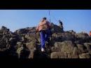 Дикий Океан. ДокФильм Wild Ocean. DocFilm