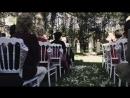 Te Amo Маша и Лёша Свадьба под ключ