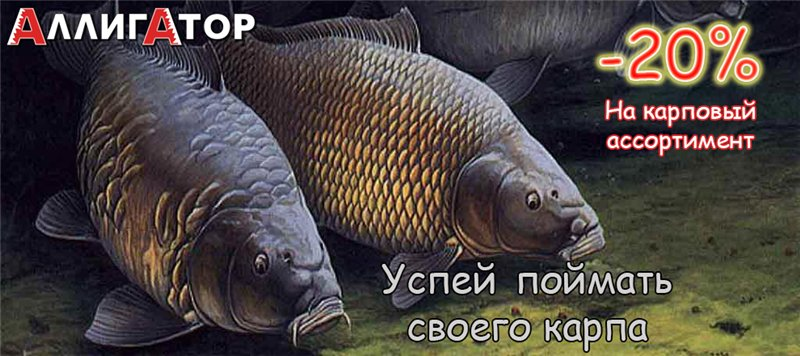 https://pp.vk.me/c604324/v604324739/30689/KN8QcF8pMEs.jpg