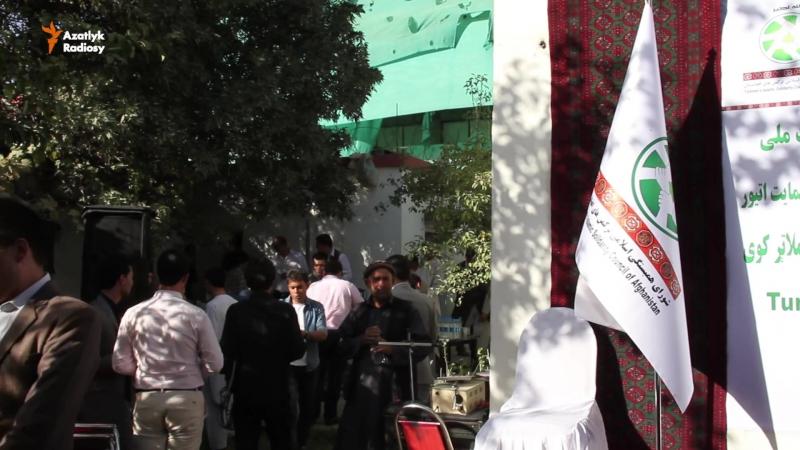 Owganystan Türkmenler parahatçylyk gepleşiklerini goldadylar