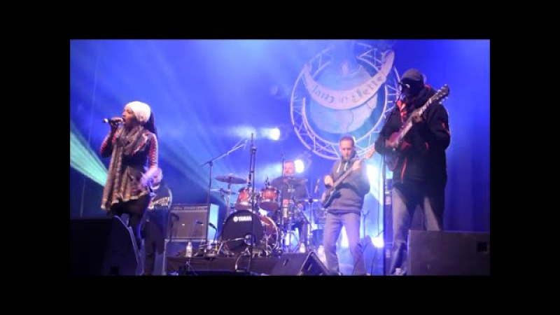 Mo'Kalamity and the Wizards in concert at Jam in Jette Festival 2016 (Full HD)