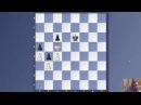 Шахматы с Александром Зайцевым - Пешечный эндшпиль. Испанская партия разменный вариант.