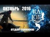 Рыбалка в Волгограде. На Воде. отдай спиннинг