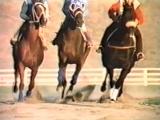 """Фильм """"Чёрный конь  Dark Horse."""" (1992)(США)"""