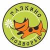 Галкино подворье-приют для животных. СПб